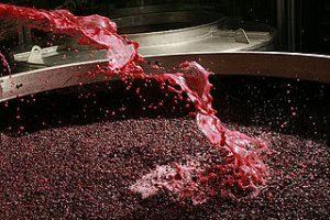 vinifiacation